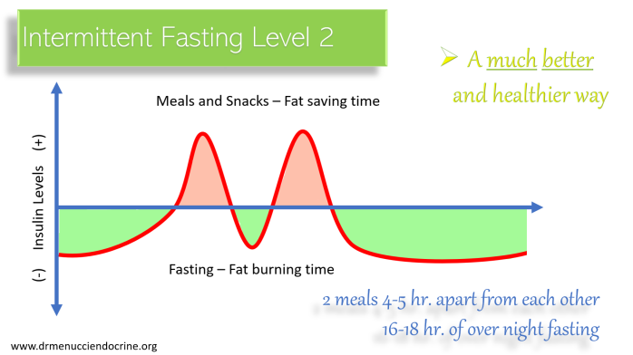 intermittent fasting level 2